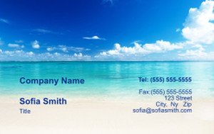 Top Picks Business Cards Credit Card Template: 335881