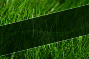 Landscaping Postcards Template: 598883
